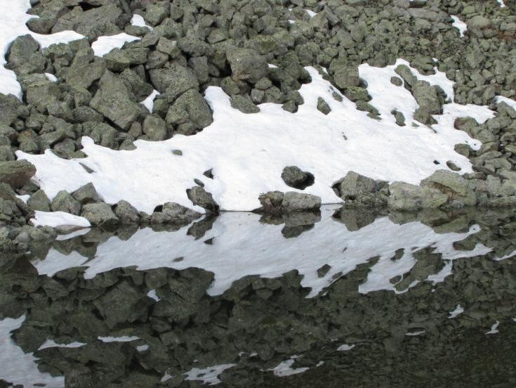 reflection ynp